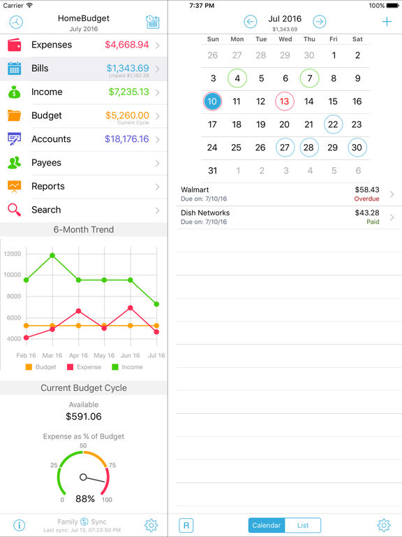 HomeBudget with Sync Screenshot