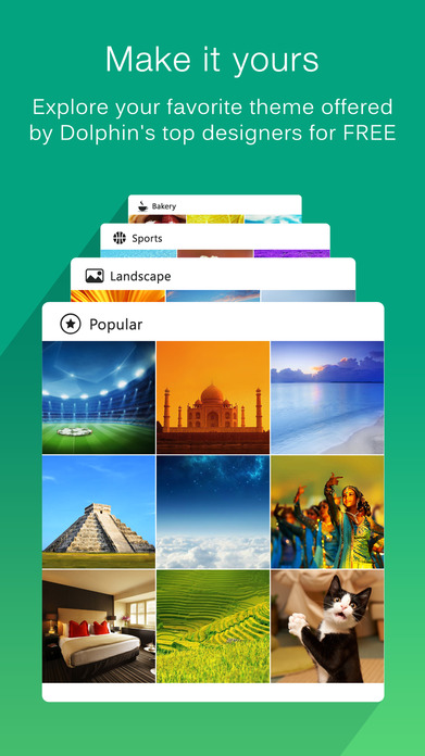 Dolphin Web Browser –Fast Private Internet Search Screenshot