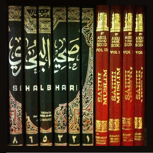 Complete Sahih Bukhari Hadees In 8 Volumes With Urdu