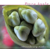 Parting Gift (Live) - Single, Fiona Apple