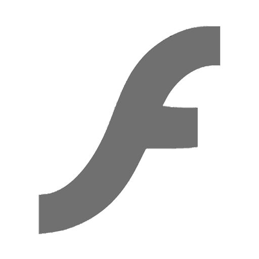 Flash Video Expose