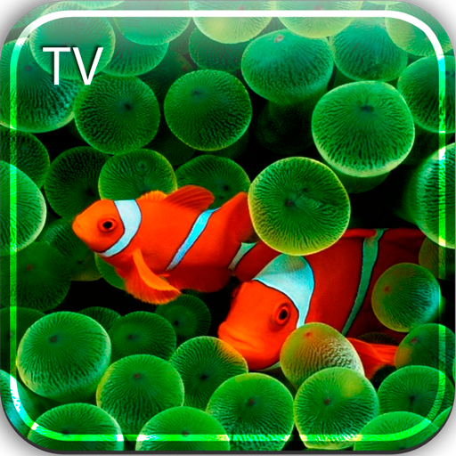 Aquarium HD TV