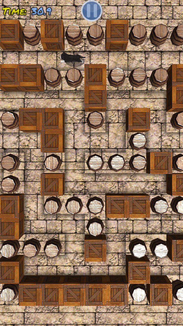 Cu Pup Maze Runner Screenshot on iOS