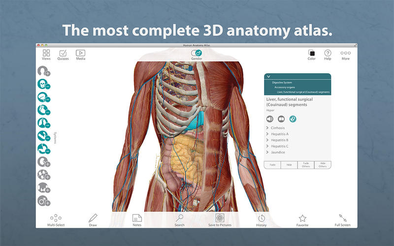 Human Anatomy Atlas 7401 3d Anatomical Model Of The Human Body