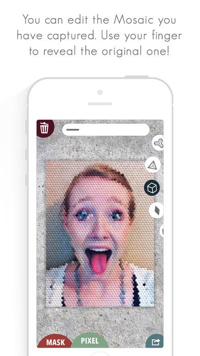 Fat Lens Pro - Mosaic Photos Screenshot on iOS