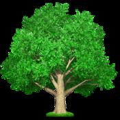 關于提綱 Tree