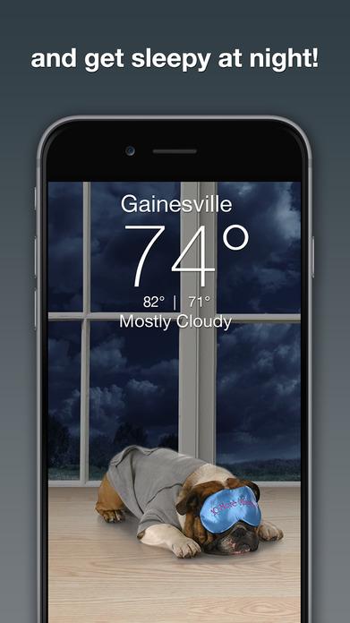Weather Puppy Screenshot