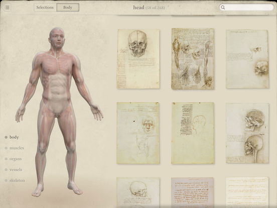Leonardo da Vinci: Anatomy Screenshot