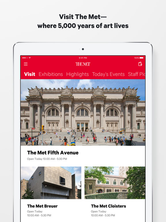 The Metropolitan Museum of Art, NYC Screenshot
